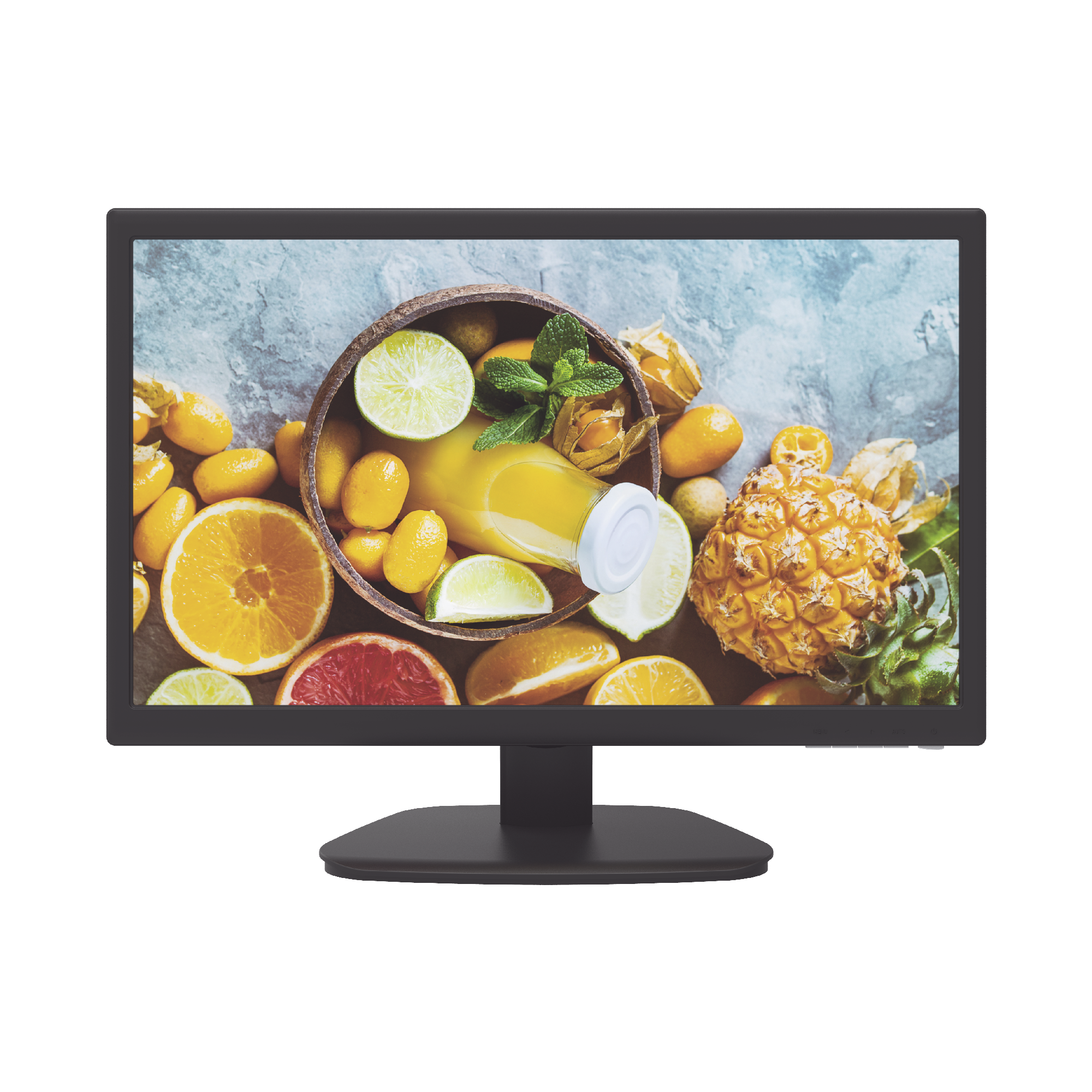 Monitor LED Full HD de 21.5 / Ideal para Videovigilancia / Uso 24-7 / Entrada HDMI-VGA / Compatible con Montaje VESA