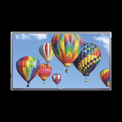 """Pantalla LED de 55"""" para Publicidad Digital / Programación de Horarios / Contenido Personalizado / Sistema Operativo Android / 2 Entradas USB"""
