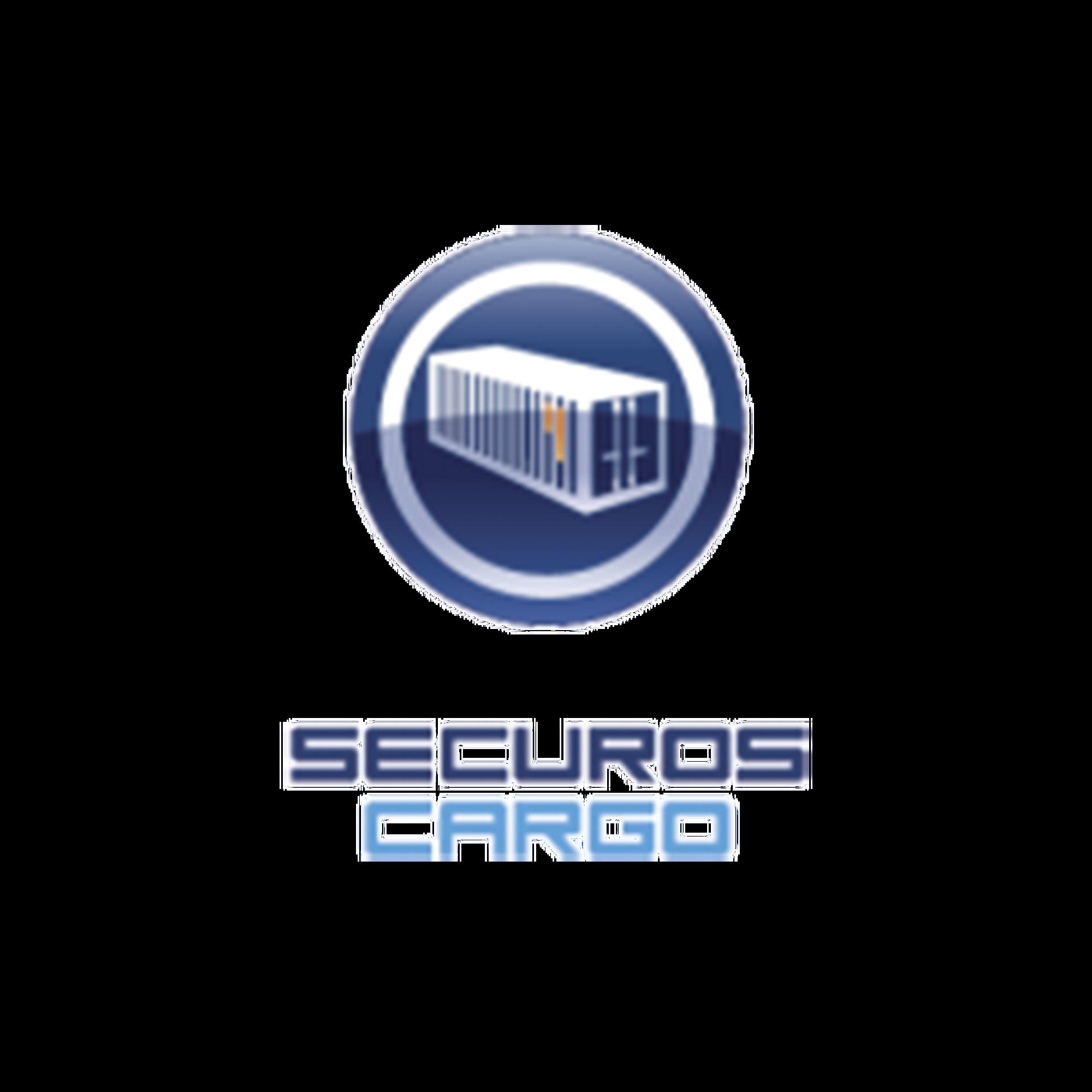 Licencia de Reconocimiento de Número de Contenedor SecurOS CARGO, por flujo de Cámara