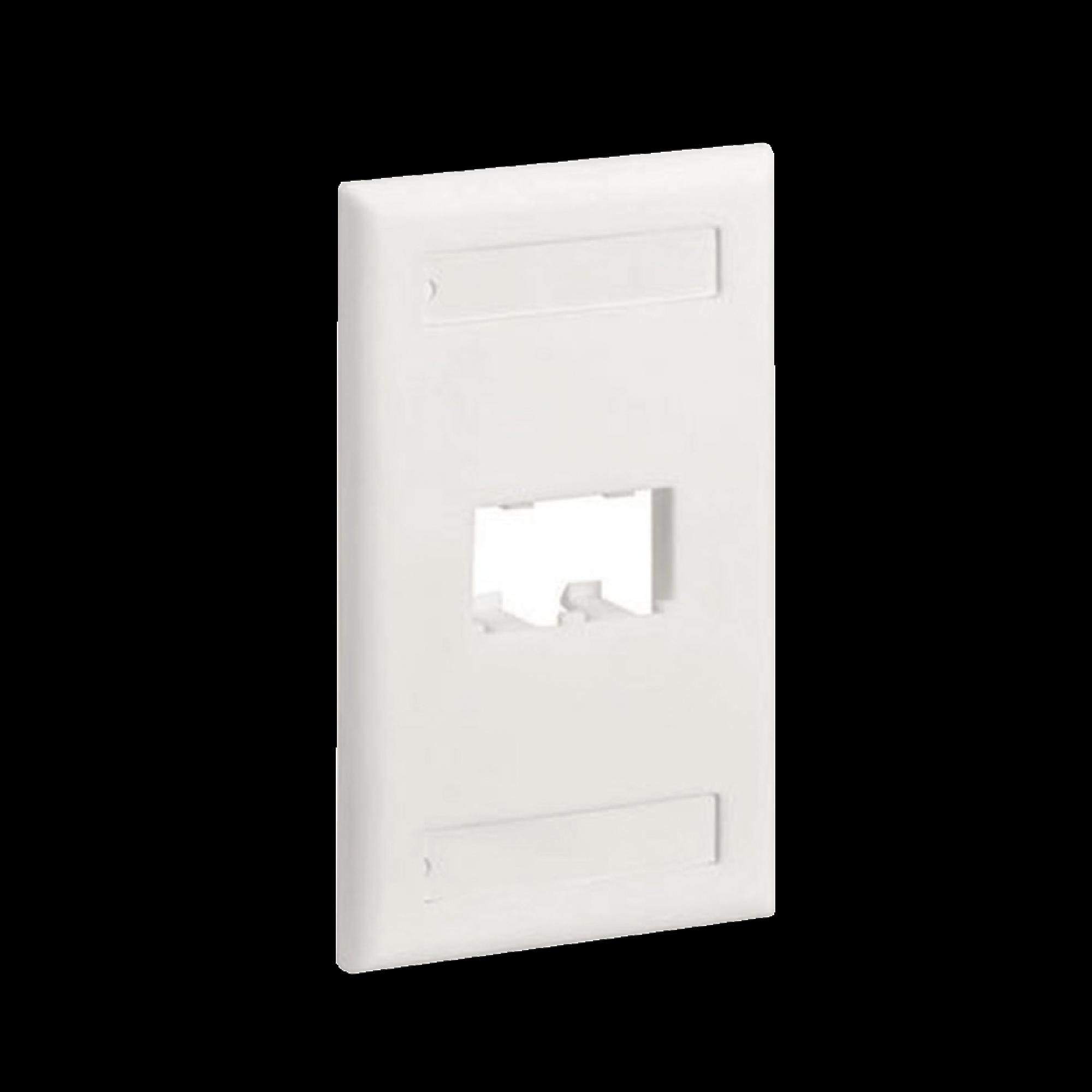 Placa de Pared Vertical Clásica, Salida Para 2 Puertos Mini-Com, Con Espacios Para Etiquetas, Color Blanco Mate