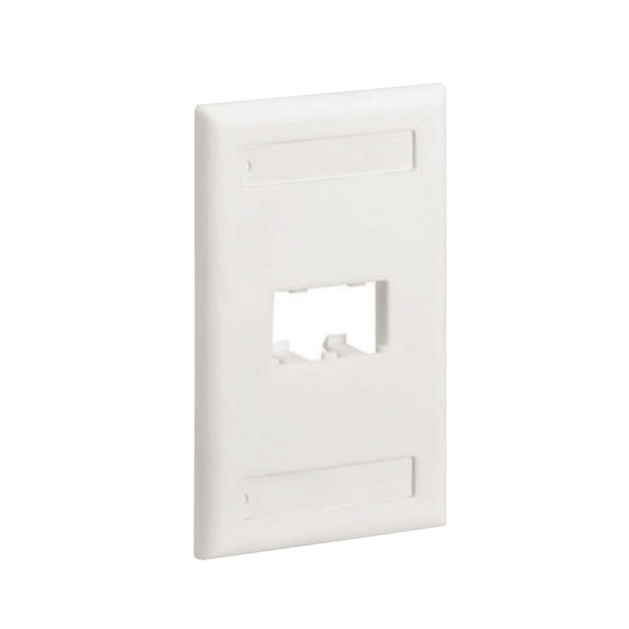 Placa de Pared Vertical Clásica, Salida Para 2 Puertos Mini-Com, Con Espacios Para Etiquetas, Color Blanco