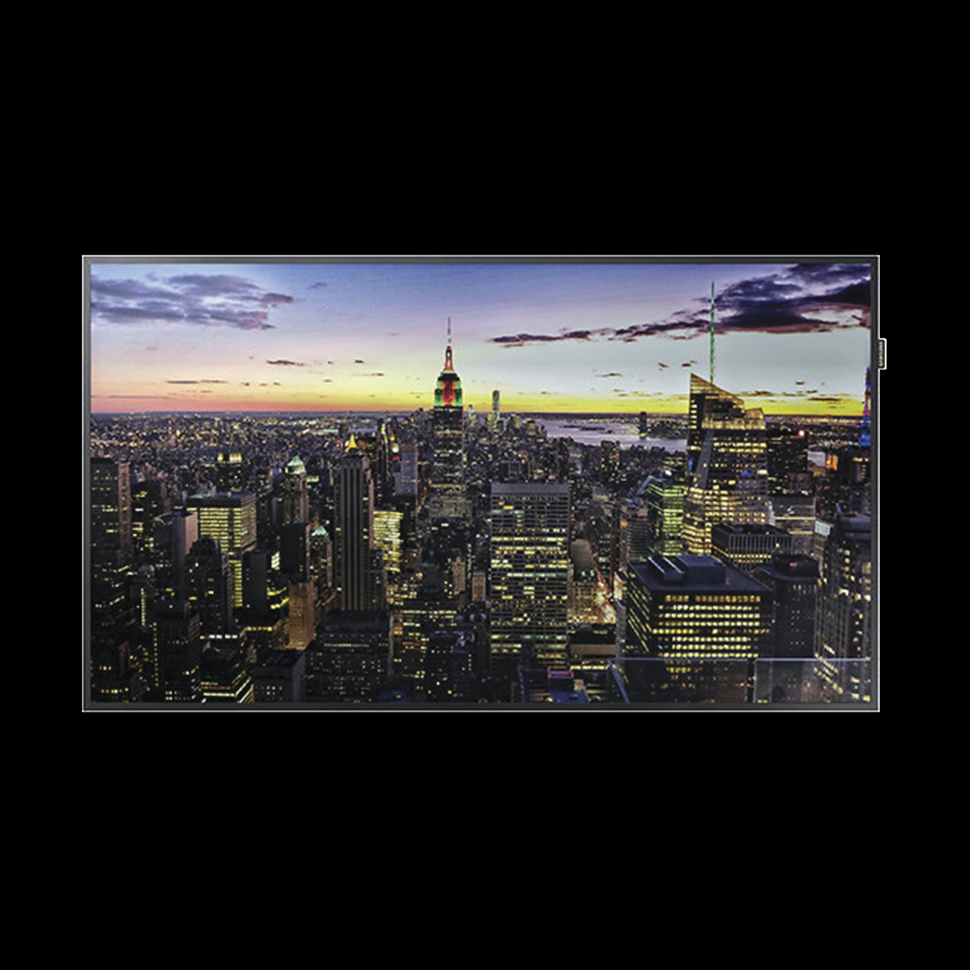 Pantalla Profesional LED de 55, UHD 4K (3840x2160p), Entradas de Video HDMI/DVI-D/DisplayPort. Compatible VESA