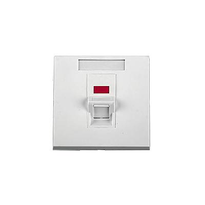 Tapa de pared, salida para un puerto angulado, con espacio para etiqueta - Blanco