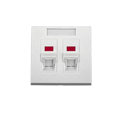 Tapa de pared, salida para dos puertos angulados, con espacio para etiqueta - Blanco